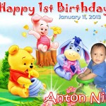 Anton Niño's 1st Birthday (Pooh & Friends)