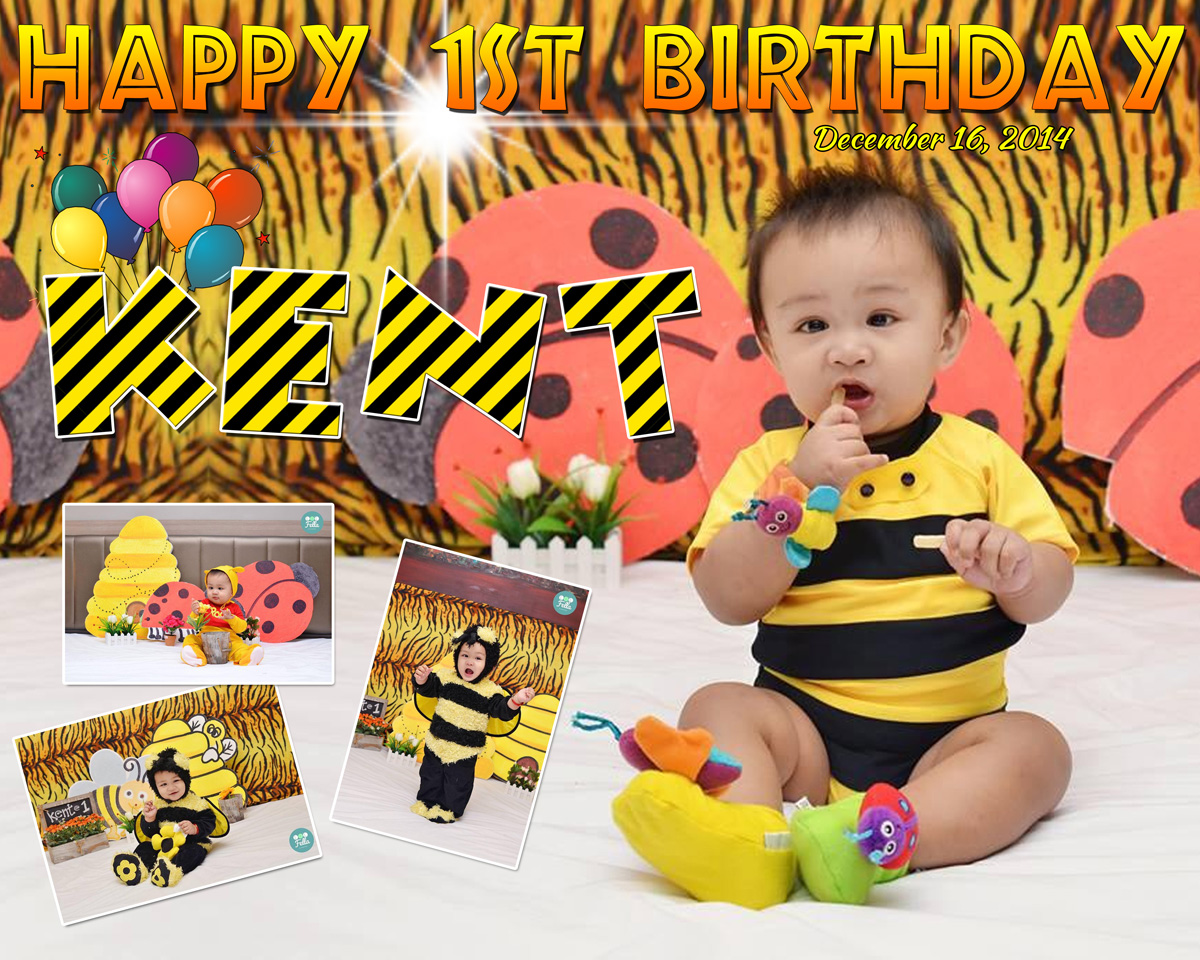 Kent Jugan1st Birthday Bumble Bee Goes To Safari