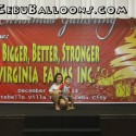 Balloon Pillars for Virginia Farms Inc