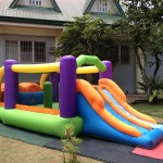 Small Inflatable with Slide (Obstacle Racer)