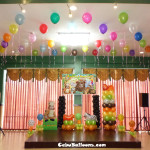 Safari Theme Balloons with Standee & Tarp at Hannah's Party Place