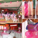 Pink Circus theme Birthday Decoration at Hannah's Party Place