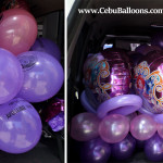 Sofia the First Balloons inside delivery van