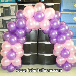 Sofia the First Cake Arch for pick-up