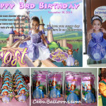 Sofia the First (Frost) Party Package at Happy Homes Lapulapu