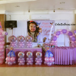 Sofia the first Decor & Party Combo Package at Maria Lina