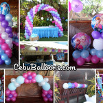 Disney Frozen Balloon Decoration with Party Items at Mama Dal's Party Place