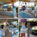 Frozen theme Balloon Decorations with Party Supplies at Virginia Hills