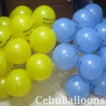 Yellow & Light Blue Stick Balloons