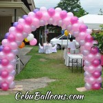 Entrance Arch for a Whimsical Owl Outdoor Birthday Party