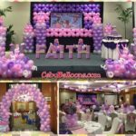 Sofia the First Bongga Package C at Parklane